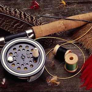 Охотничьи и рыболовные магазины Бора