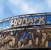 Зоопарки в Боре